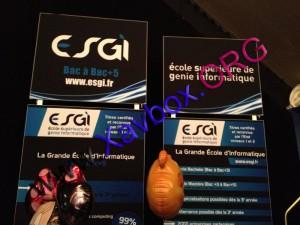 ESGI (Ecole Supérieure de Génie Informatique)